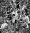 Left to Right: Murren Kennedy (Longaville), Chelsea Turner (Maria),  Jessica Hillenbrand (Rosaline), Andy Haftkowycz (Berowne), Soren  Gillaspy (King Ferdinand), Kailea Saplan (Princess), Quinlan Fitzgerald  (Katherine), and Johnny Rice (Dumaine).